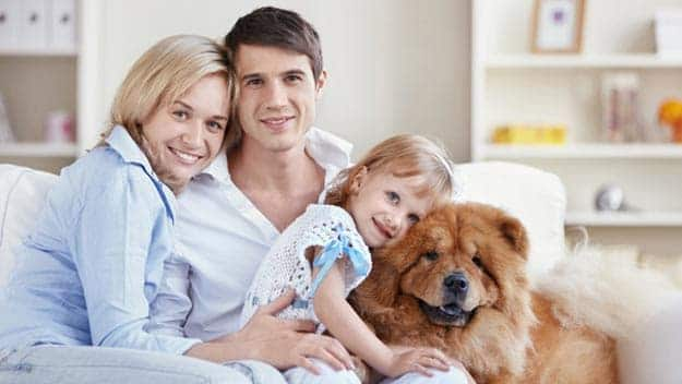 Wills & Trusts dog-young-family Direct Wills Crystal Palace